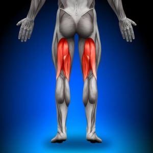 number one sciatica exercise to avoid is stretching the hamstrings. Sciatica exercises